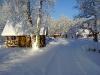Tammiku-talv-025